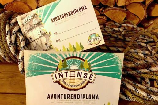 INTENSE - branding campaign digital case